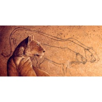Dawn of Art  (Chauvet Cave,France)