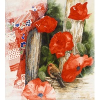 Poppies & Patterns -House Finch