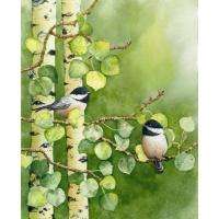 summer_light-chickadees-010